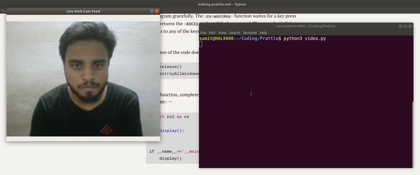 Making Prattle: A Fully-fledged P2P Video Chat Application Using